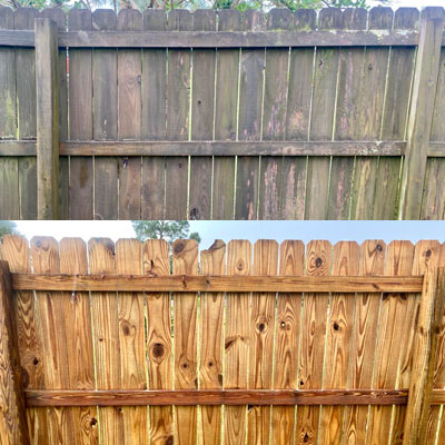 Fence and Deck Cleaning